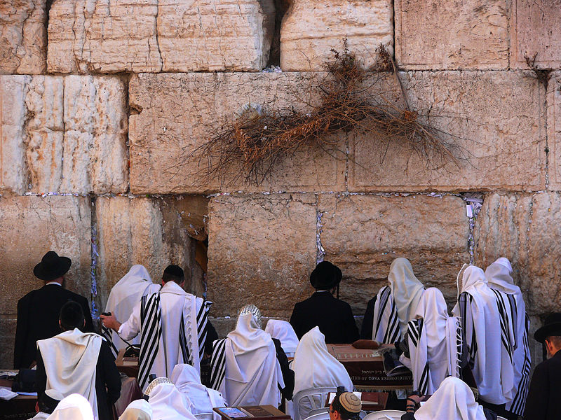 Teaching in Israel: An Experience of 'Biblical' Proportions!